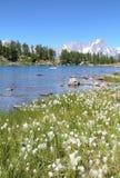 Aosta谷的Arpy湖 免版税库存图片