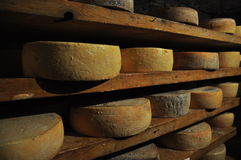 Aosta κοιλάδων ιταλική αποθήκευση γήρανσης σπηλιών τυριών παραδοσιακή Στοκ Φωτογραφίες