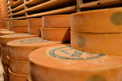 Aosta valley Fontina Italian cheese. Traditional cave aging storage. Stock Photography