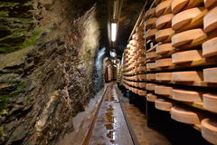 Aosta valley Fontina Italian cheese. Traditional cave aging storage. Traditional handmade mountain fontina cheese from Aosta valley, Italy. Traditional aging stock image