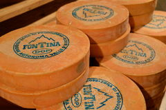 Aosta valley Fontina, trade mark Italian cheese. Traditional cave aging storage. Royalty Free Stock Photos