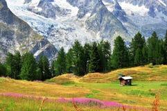 Aosta valley on summer Stock Photos