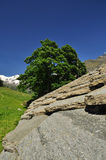 Aosta Valley. Typical stone roof Royalty Free Stock Photo