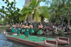 Aotearoan dance at the Polynesian Cultural Center Stock Image