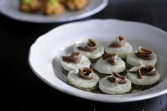 Apéritif avec du mozzarella et des anchois de buffle Image libre de droits
