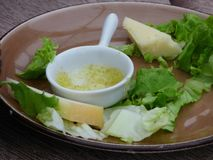 Apéritif partiellement mangé de plat de fromage avec l'immersion image libre de droits