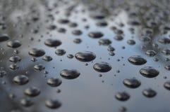 Após a chuva Imagem de Stock Royalty Free