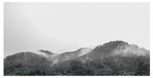 Após a chuva Imagem de Stock