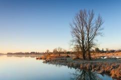 Após o nascer do sol sobre uma lagoa selvagem com árvores sós ao lado de uma vila Fotos de Stock Royalty Free