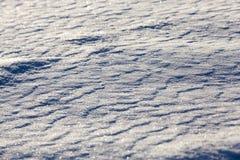 Após a queda de neve Imagem de Stock