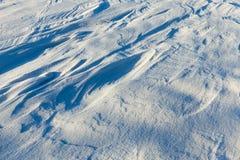 Após a queda de neve Fotos de Stock Royalty Free
