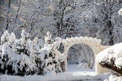 Após a tempestade da neve imagens de stock royalty free