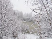 Após uma queda de neve pesada Foto de Stock