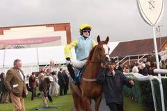 AP (Tony) McCoy Rides at Newbury Racecourse Royalty Free Stock Photo