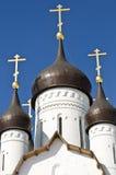 Apôtre Peter Church dans le St Petersbourg, Russie Image stock
