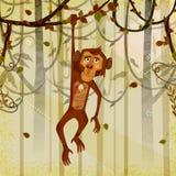 Apa för löst djur i djungelskogbakgrund Arkivfoto