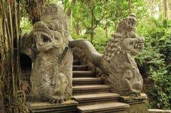 Apa Forest Sanctuary i Bali Arkivbilder