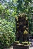 Apa Forest Sanctuary i Ubud Royaltyfria Foton