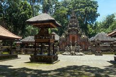 Apa Forest Sanctuary i Ubud Royaltyfri Fotografi