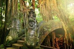 Apabro Ubad Bali Fotografering för Bildbyråer