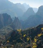 apache ίχνος τοπίου της Αριζόνα Φοίνικας Στοκ εικόνα με δικαίωμα ελεύθερης χρήσης