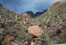 apache ίχνος τοπίου της Αριζόνα & Στοκ εικόνα με δικαίωμα ελεύθερης χρήσης