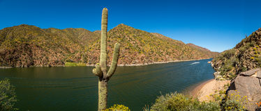 Apache Lake Landscpaes in Arizona. Royalty Free Stock Image