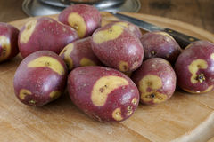 Apache Potatoes Stock Photos