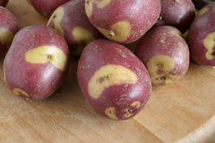 Apache Potatoes Royalty Free Stock Images