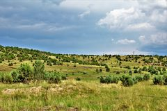 Apache-Sitgreaves εθνικό δρυμός, δρόμος 51, Αριζόνα, Ηνωμένες Πολιτείες Υπηρεσιών του Δασικού Εφαρμογής στοκ εικόνα με δικαίωμα ελεύθερης χρήσης