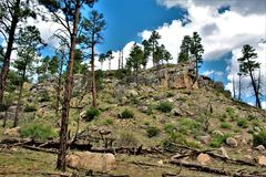 Apache-Sitgreaves Nationaal Bos, Arizona, Verenigde Staten stock foto's