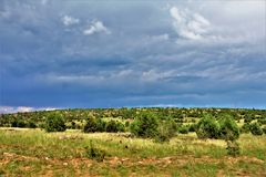Apache-Sitgreaves National Forest, Forest Service Road 51, Arizona, United States. Scenic landscape view of the Apache Sitgreaves National Forest off Forest Stock Photos