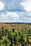 Apache Sitgreaves National Forest 2002 Rodeo-Chediski Fire Regrowth as of 2018, Arizona, United States. Scenic landscape view of the Apache Sitgreaves National Royalty Free Stock Photo
