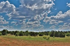 Apache-Sitgreaves National Forest, Forest Service Road 51, Arizona, United States. Scenic landscape view of the Apache Sitgreaves National Forest off Forest stock photo