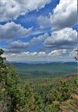 Apache--Sitgreavesstaatlicher wald, Arizona, Vereinigte Staaten Stockbilder