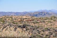 Apache Trail Royalty Free Stock Photo