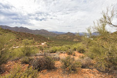 Apache trail scenic drive, Arizona. Panorama of Apache trail scenic drive in the early summer morning mist Royalty Free Stock Photos
