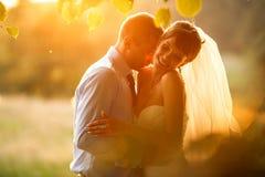 Apacible está besando a su novia sonriente en el verde del fondo para Imagen de archivo libre de regalías