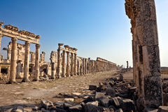 apamea Συρία Στοκ Εικόνα