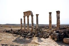 apamea Συρία Στοκ φωτογραφίες με δικαίωμα ελεύθερης χρήσης