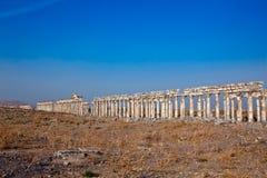 apamea Συρία Στοκ φωτογραφία με δικαίωμα ελεύθερης χρήσης