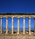 Apamea Stock Photos