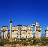 Apamea Royalty Free Stock Photo