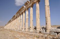 Apamea ruins Royalty Free Stock Photography