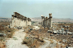 Apamea ruins Stock Photography
