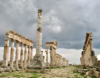 Apamea - it's a trace of antique power and shine Stock Photo