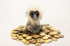 Apan sitter på en hög av guld- mynt Arkivfoto