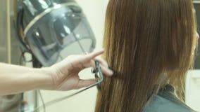 Aparador y corte de pelo del pelo metrajes