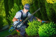 Aparando o trabalho em um jardim Fotos de Stock Royalty Free