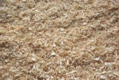 Aparas de madeira Imagem de Stock